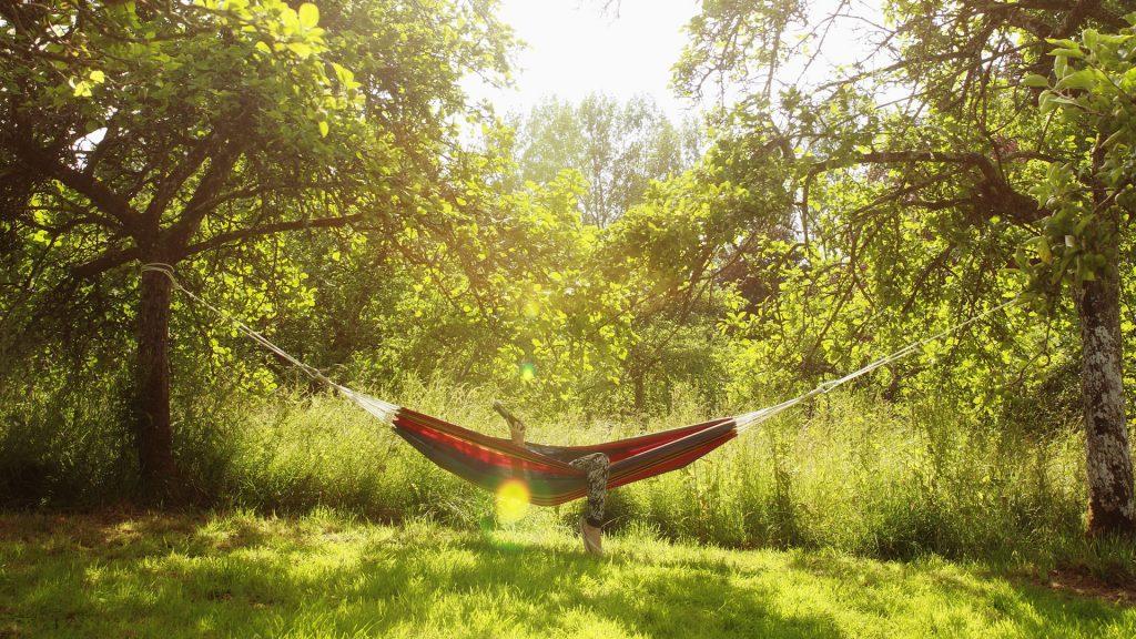 or_hammock
